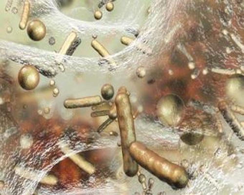 کنترل بار باکتریایی در زخم های مزمن